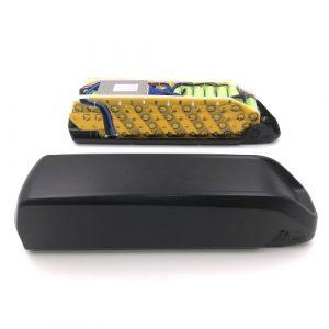 Ebike Battery in Case